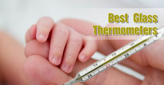 best glass thermometer